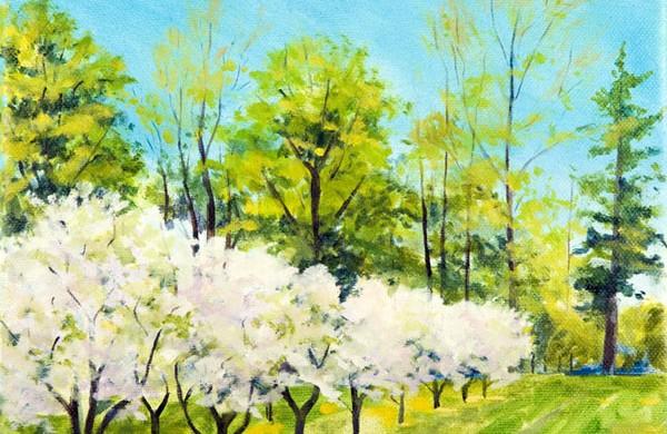 Cherry Fantasy by Jane Batteiger